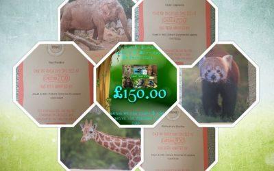 Oldham Brownies help save the zoo!